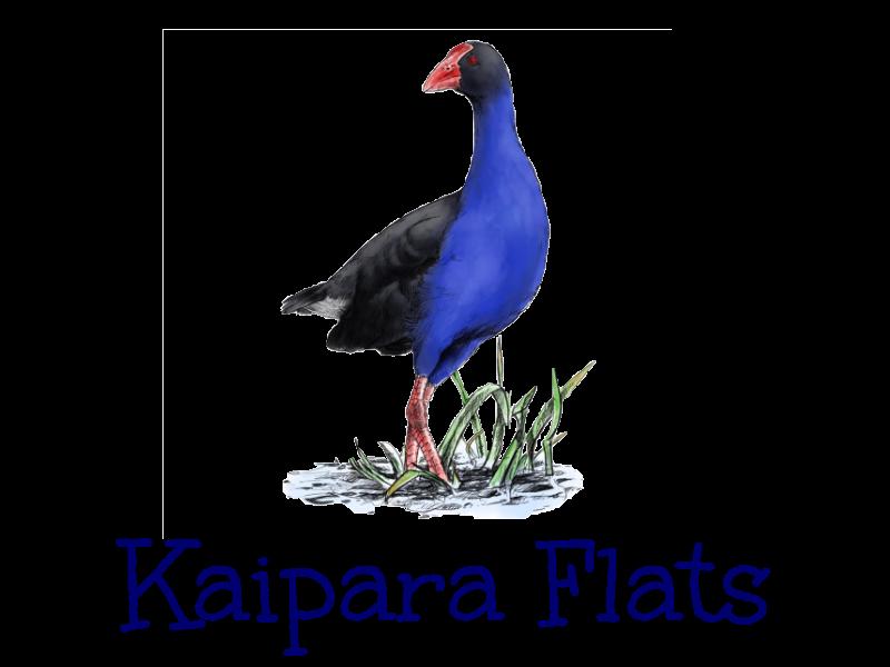 Kaipara Flats